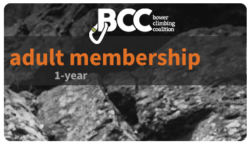1-year adult membership